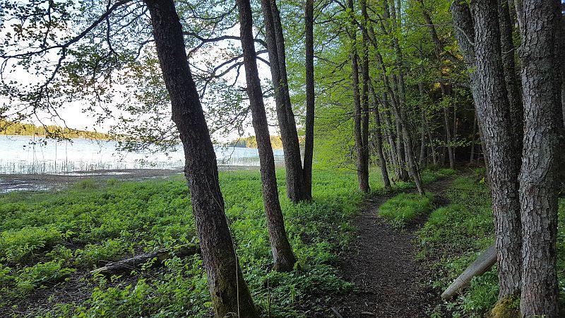Polku Störsvikissä Siuntiossa