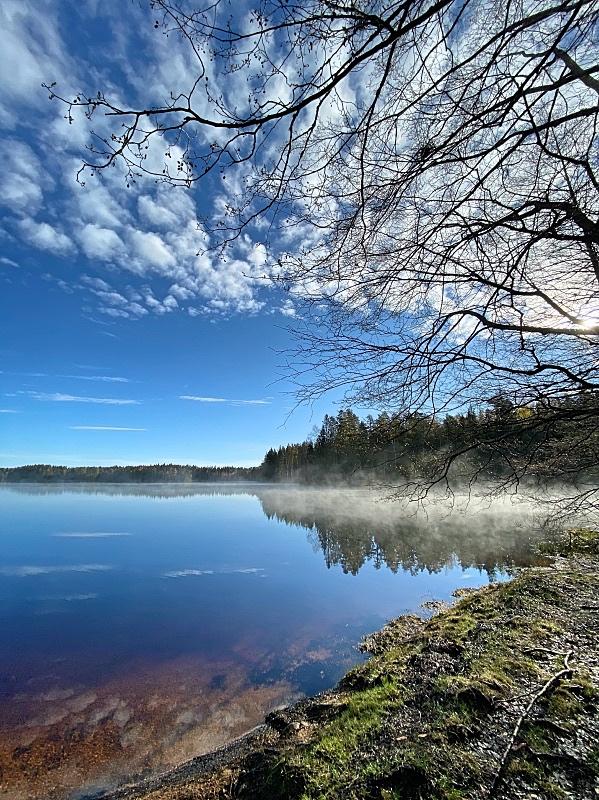 Aamun usva Liesjärven kansallispuistossa