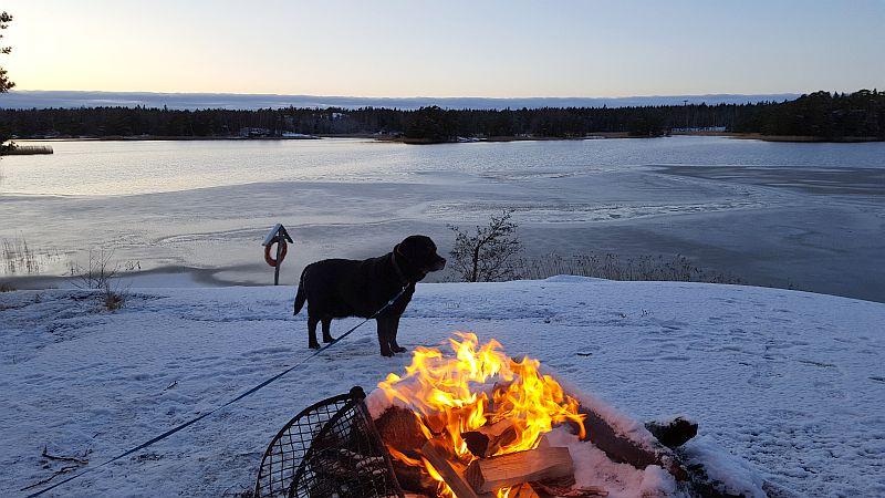 Nuotiopaikka talvella Linlo