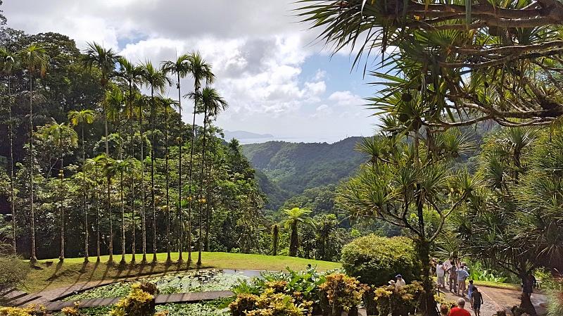 Jardin de Balata kasvitieteellinen puutarha