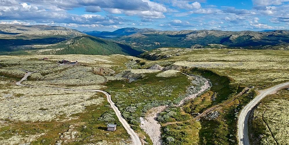 Rondanen kansallispuisto Norjassa