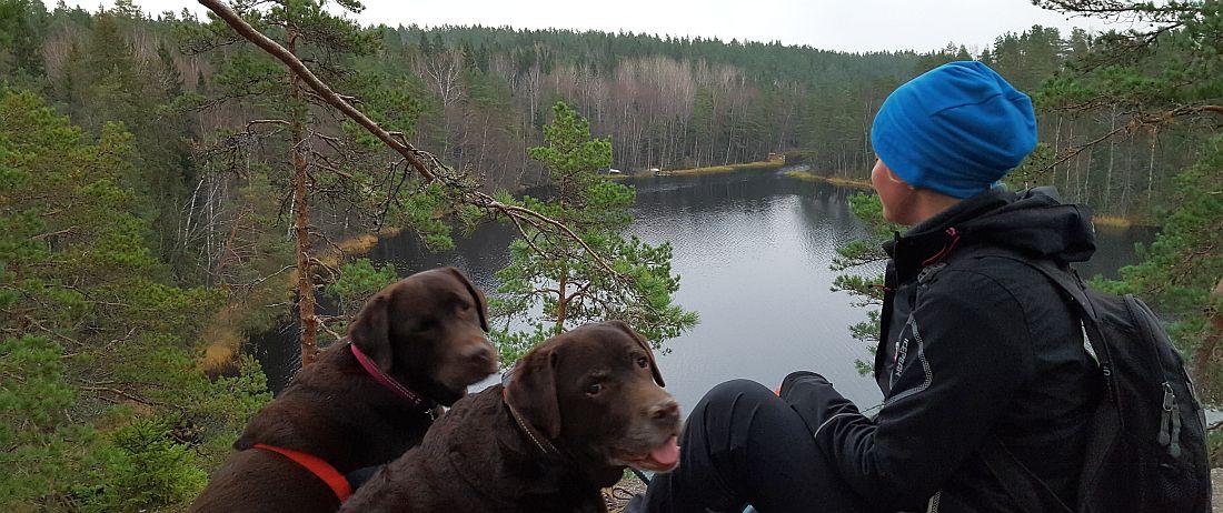 Nuuksion kansallispuistossa koiran kanssa