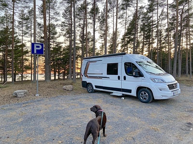 Koiran kanssa on tosi helppoa matkustaa retkeilyautossa