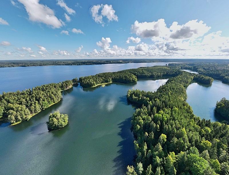 Saaren kansanpuisto Tammelassa